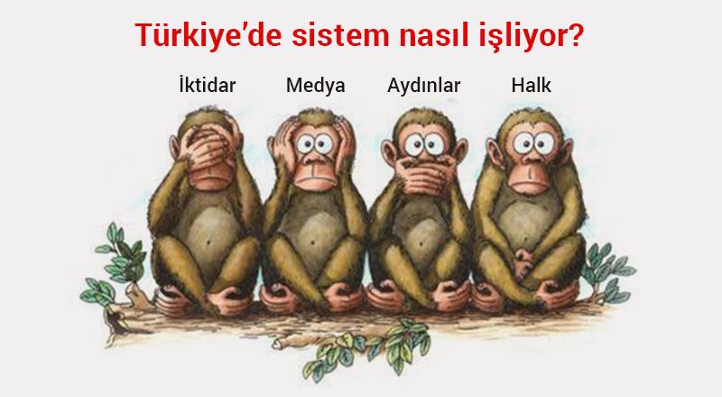 blog-uc-maymun-hikayesi